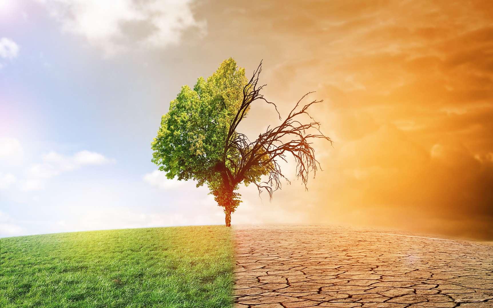 MODULE 1: Ressources en eaux, changements climatiques, risques naturels et mesures d'adaptation